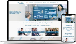 Maxsult Referenz Website